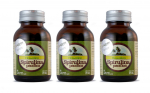 600 Tablet 500mg 600 adet x 500 mg Tablet Spirulina Net:300g (Cam Kavanoz - 3'lü Set)